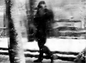 Nix © catherine peillon