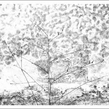 Eleusis 2016 - tirage sur papier Canson Edition Etching Rag 310g format 40 x 60 cm