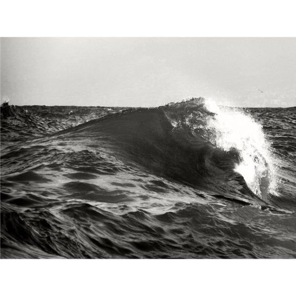 vague - 30X40 - H William Turner © catherine peillon