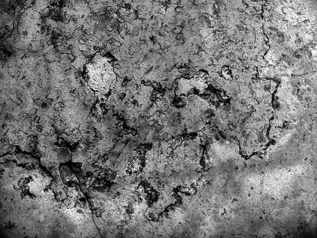 hésitation 4 © catherine peillon