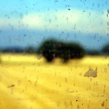 jaune 3 © Catherine Peillon
